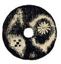無文銀銭奈良時代古いお金写真